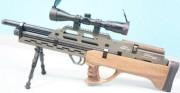 Пневматическая винтовка EVANIX MAX-ML (SHB, Wood)